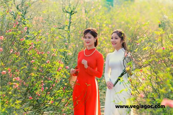 Bảng giá vé máy bay Tết đi Thanh Hóa 2020