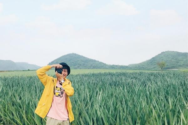 Cánh đồng dứa tuyệt đẹp thu hút giới trẻ checkin ở Ninh Bình