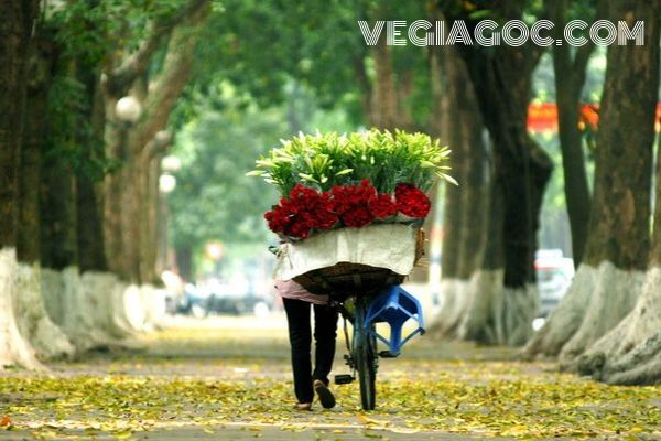 Giá vé máy bay khứ hồi đi Hà Nội Vietnam Airlines