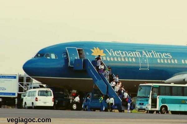 Nhiều vé máy bay giá rẻ được bán ra dịp Tết Nguyên Đán