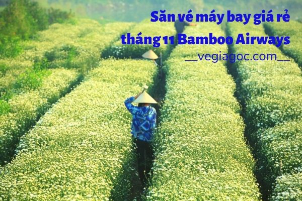 Săn vé máy bay giá rẻ tháng 11 Bamboo Airways