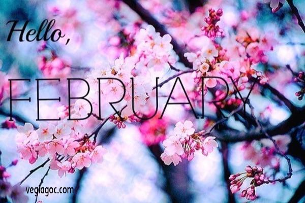Tháng 2 nên đi du lịch ở đâu đẹp nhất