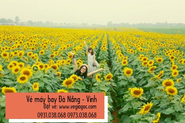Vé máy bay Đà Nẵng đi Vinh giá rẻ chỉ từ 190 000 đồng