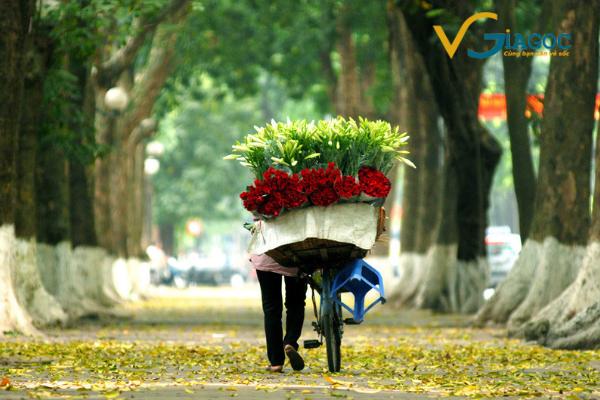 Vé máy bay đi Hà Nội Vietnam Airlines