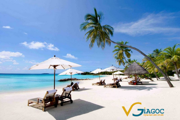 Vé máy bay đi Nha Trang Vietnam Airlines