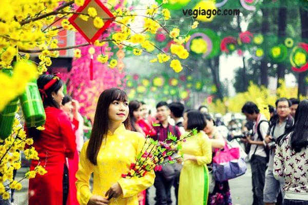 Vé máy bay Tết Sài Gòn Đồng Hới 2019